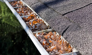 gutter cleaning Shreveport